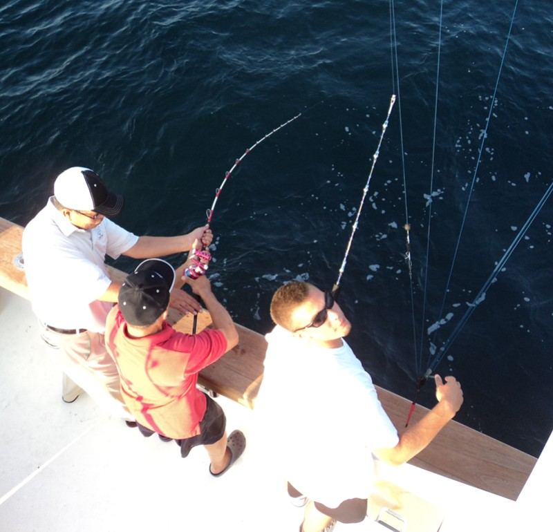 Bluefin Tuna Jigging